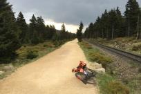 weiter auf dem Goetheweg